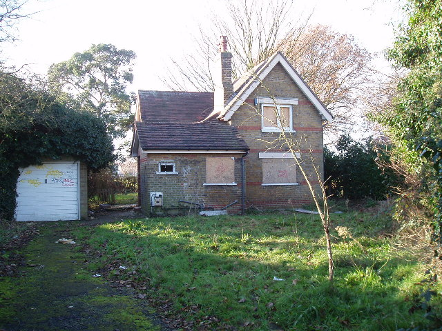Derelict house in the park
