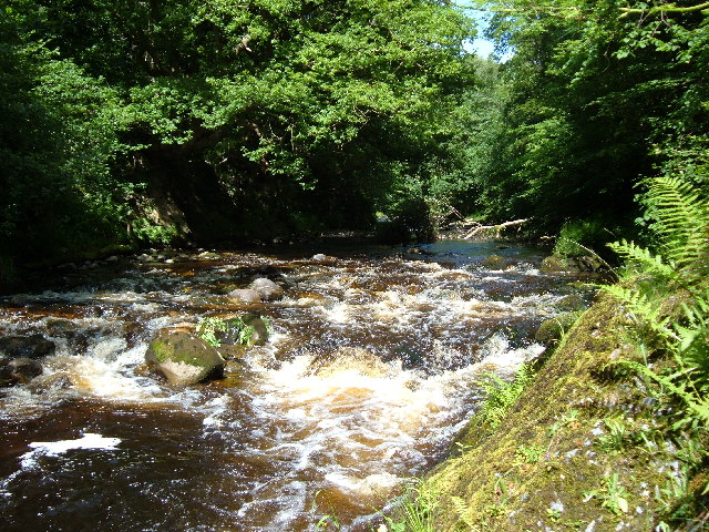 The Afon Mellte