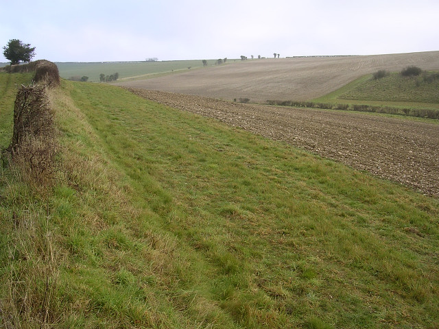 Cheselbourne West Down south of Kingscombe
