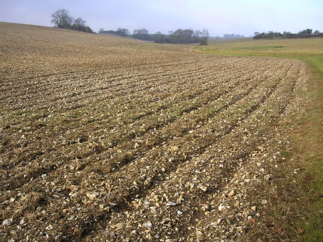 Ploughed chalk field at Hog Leaze
