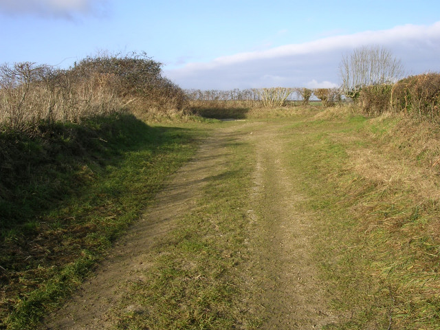 Bridleway north of Carter's Barn Farm