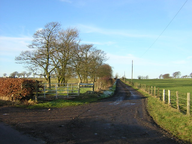 Track Leading to Nethershields