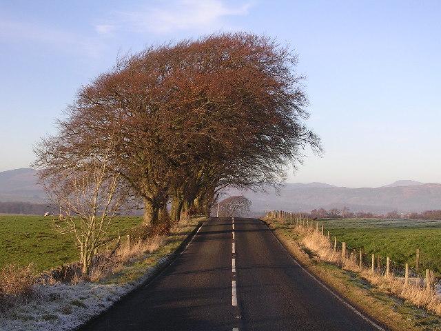A875 near Kepculloch