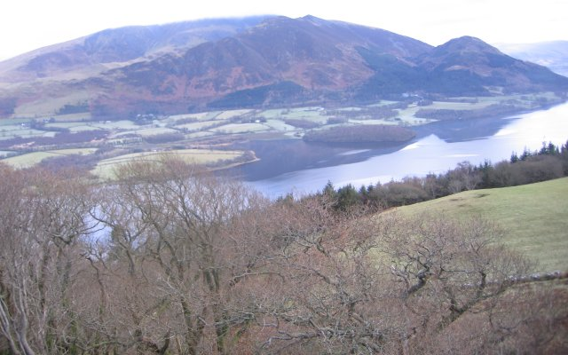 Bassenthwaite from Sale Fell