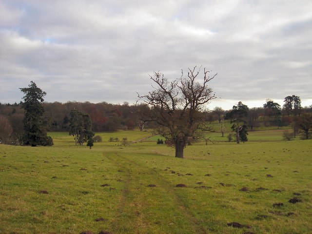 Ickworth Park from Little Saxham