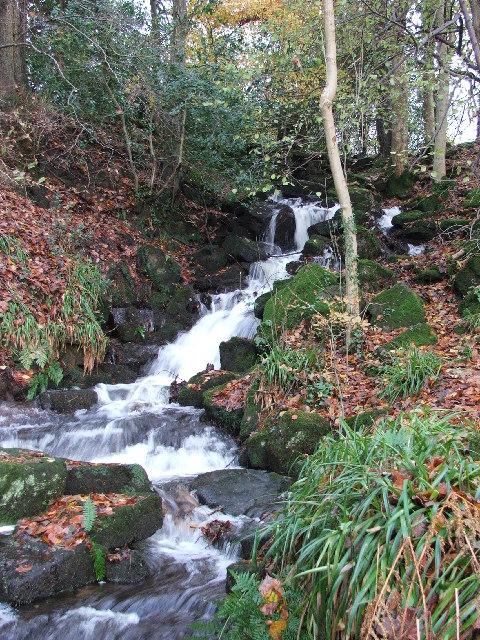 Cleddon Falls near Llandogo
