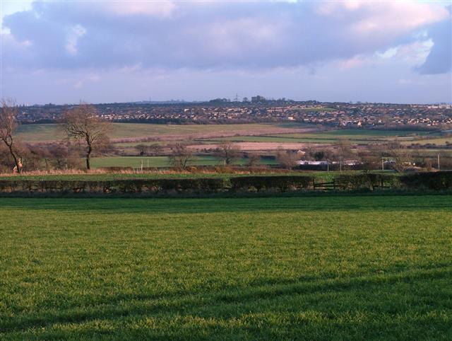 Fields East of Callerton Lane