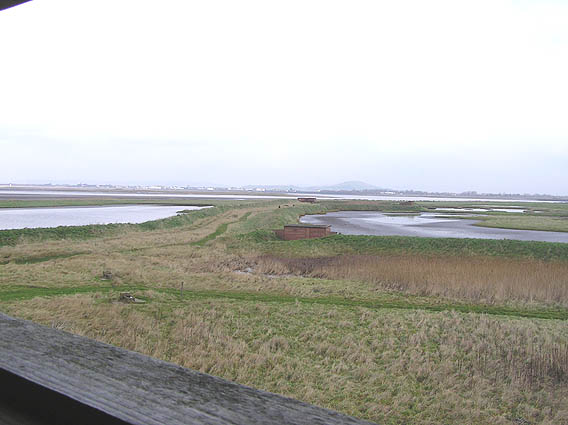 View to ponds and hides from Tower of the Winds