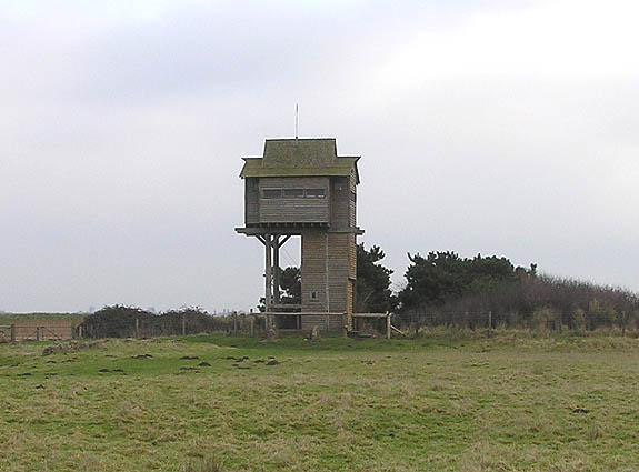 Tower of the Winds bird hide, Steart Reserve