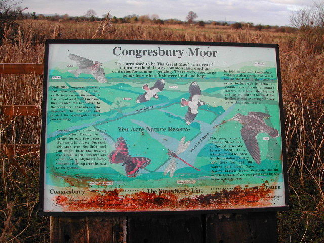 Congresbury Moor - Information Board