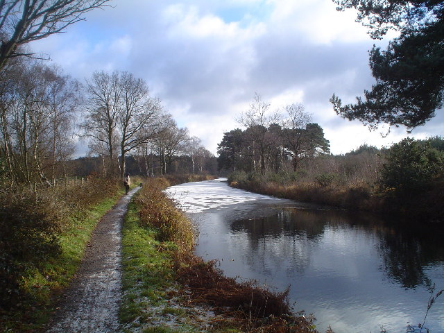 Basingstoke Canal at Pondtail