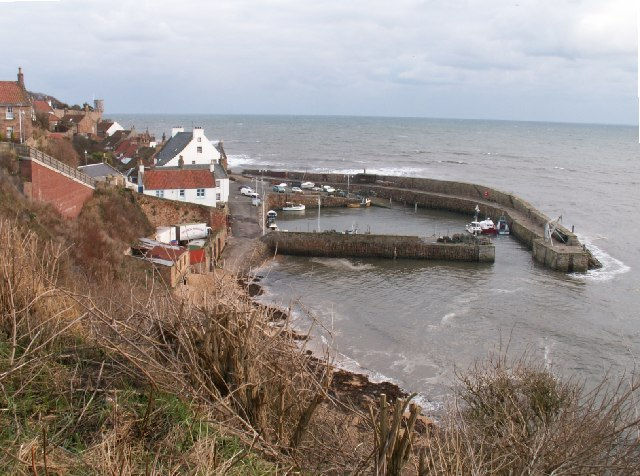 Crail harbour from above