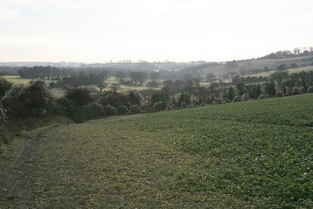 King's Way looking towards Whiteflood Farm
