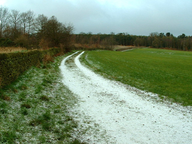 Path to Deffer Wood