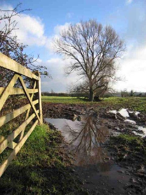 Footpath to Pillham Farm