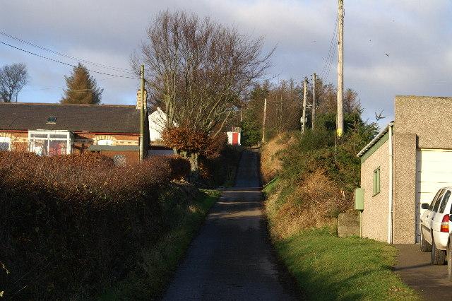 Road to Hodgeton