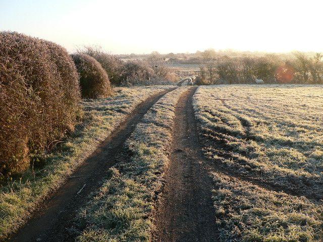 Frosty track near Tyddyn Crythor