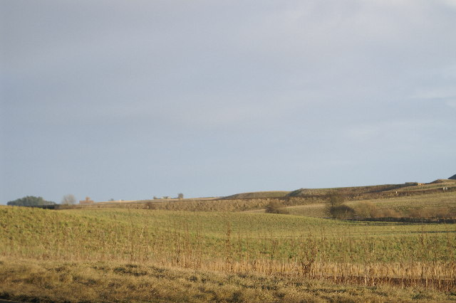 Fields from A92 between Arbroath and Montrose