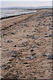 TR0464 : Beach on south bank of Swale by Tom Stringer