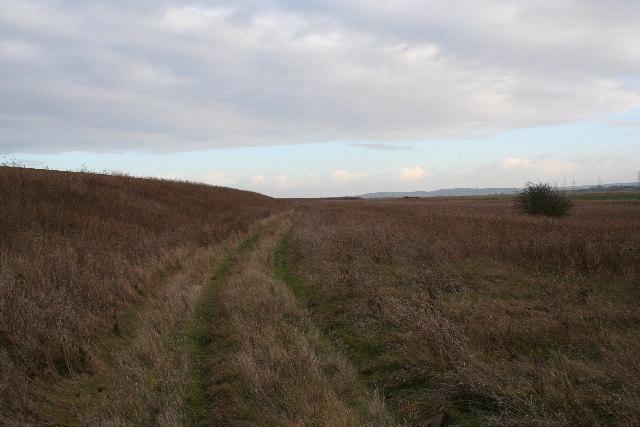Nagden Marshes