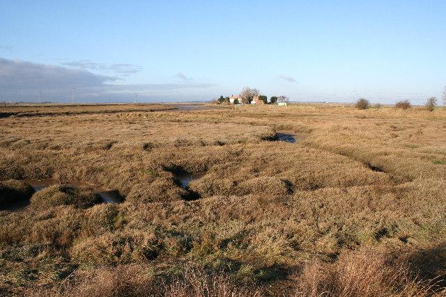 Salt marsh at Nagden