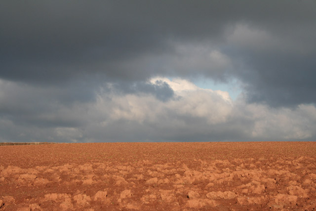 Halberton: ploughed field with clouds