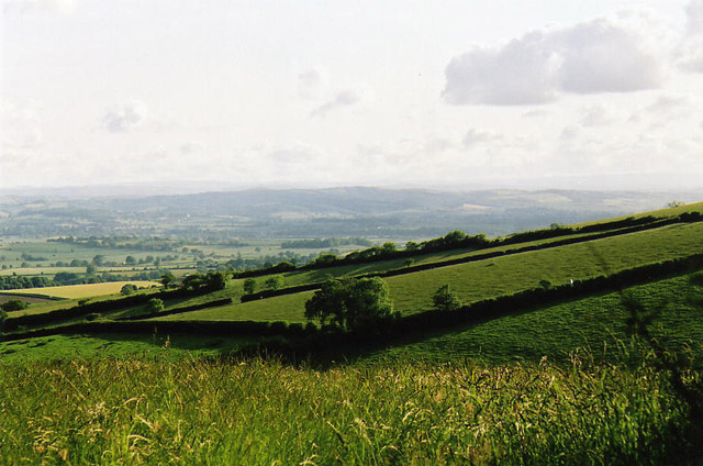 Bradninch: west from Beacon Cross