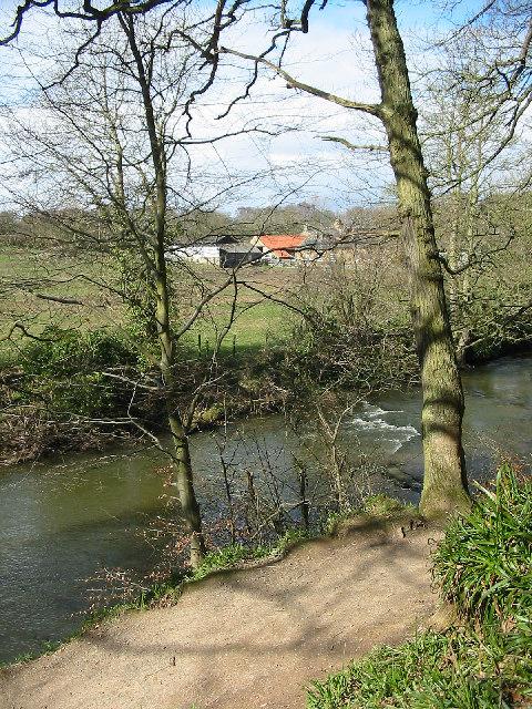 Plessey Mill Farm, Northumberland