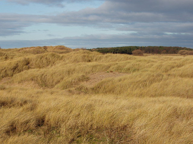 Raven Meols Hills - sand dunes in Formby