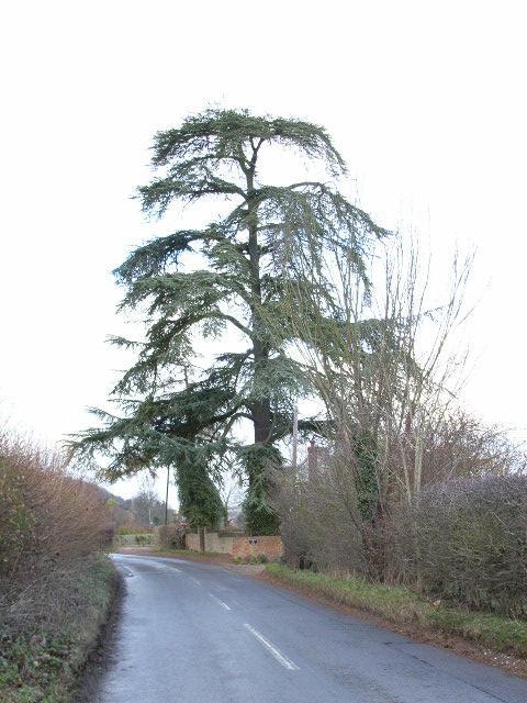 The Hambleden to Skirmett road