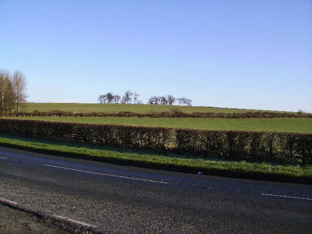 Farmland Near Conder Green