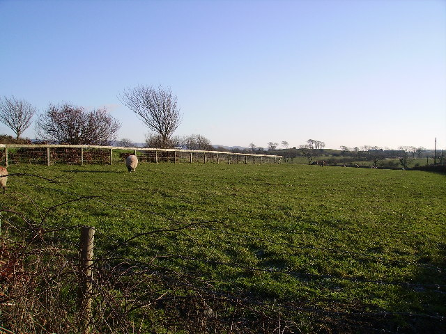 Farmland Thurnham