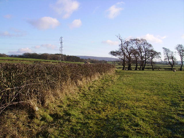 Farmland Near Bay Horse