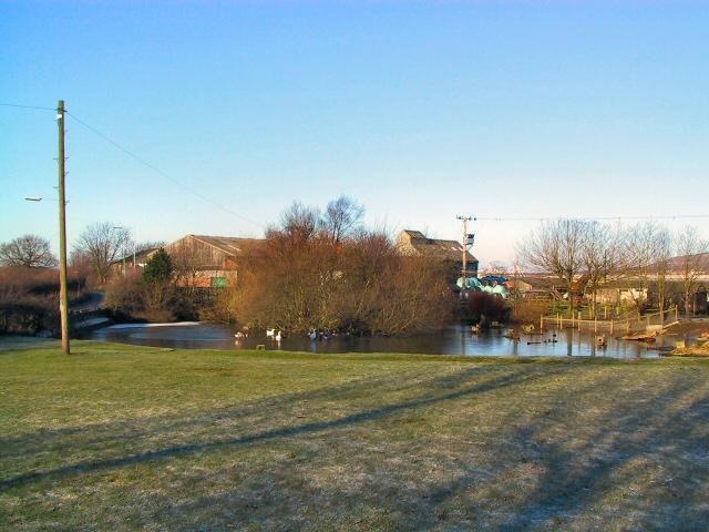 Duckpond at Ormstons Farm