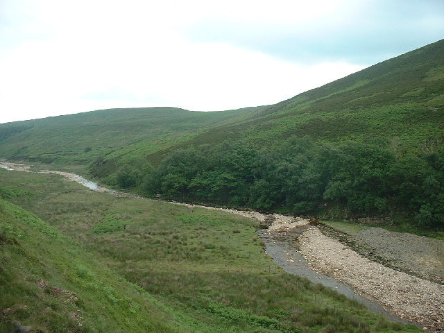 Langden Brook at Birch bank