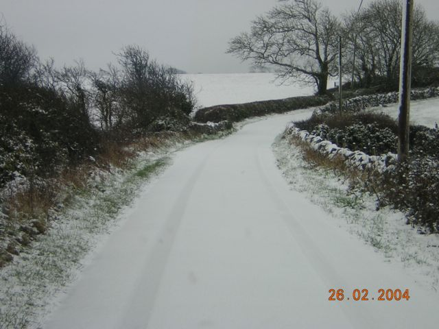 Sudden Snow Fall