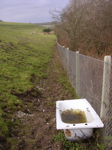 Abandoned bathtub below Poundbury hillfort