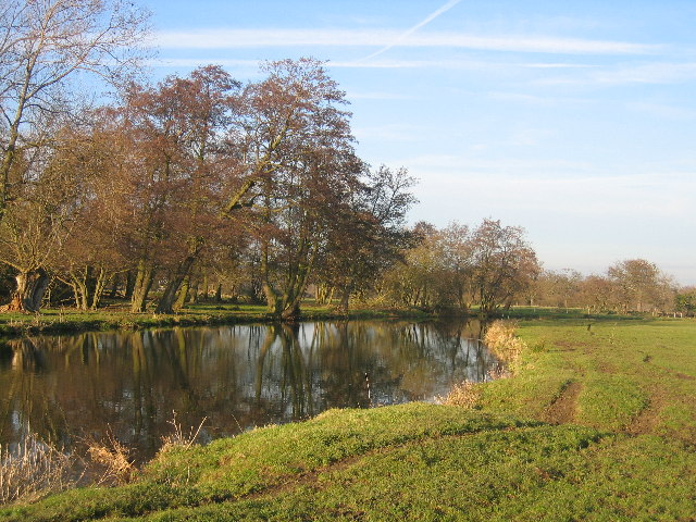 The River Wey Navigation near Papercourt SSSI