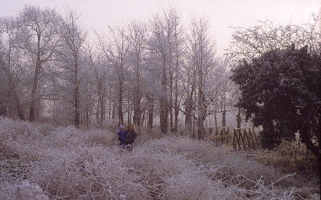 Stanwell Moor in winter