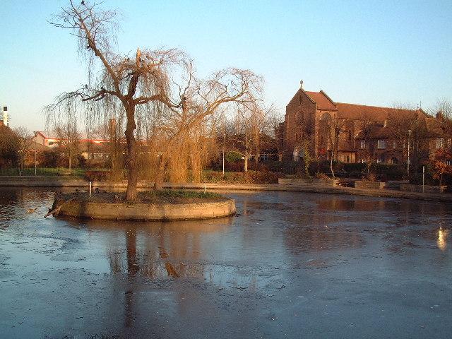 Frozen pond, Feltham Green