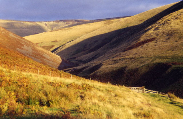 Cheviot Burn