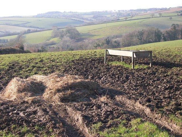 Cattle Feeding Station