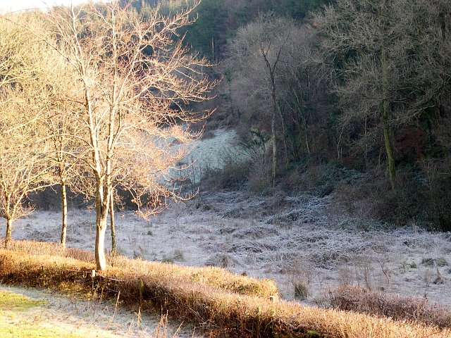 Frost in the Valley at Highwood