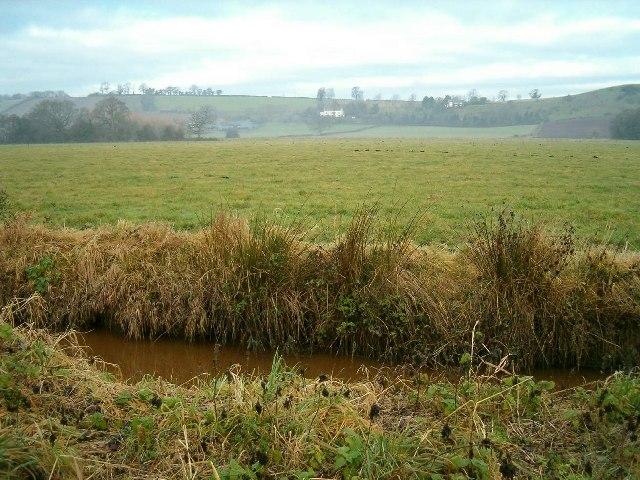 Butleigh Moor
