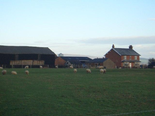 Higham Farm