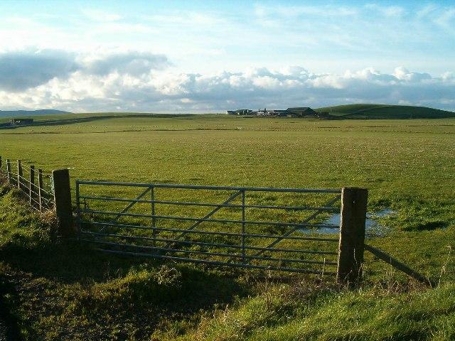Rhoin Farm