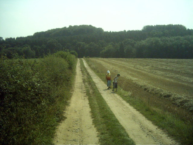 Farm Track From  Sherwood Forest Campsite