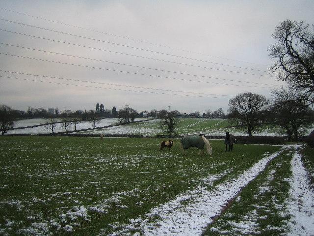 Farmland Near Upper Eastern Green