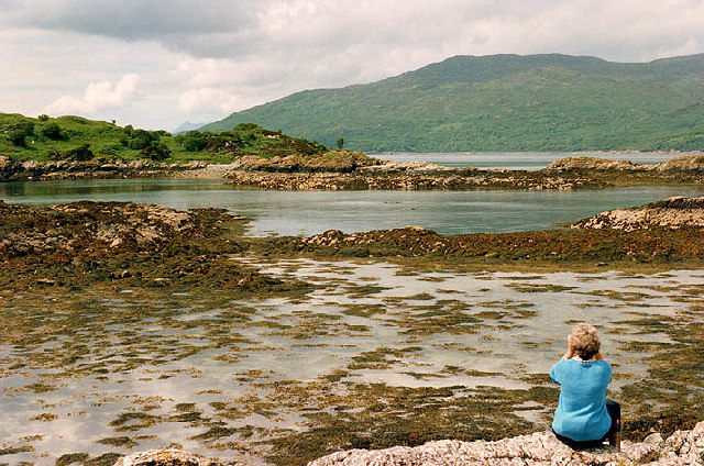 "View of Sandaig Islands from ""Camusfearna"" Bay"