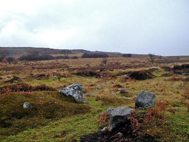 Romano-British Settlement on Beanley Moor